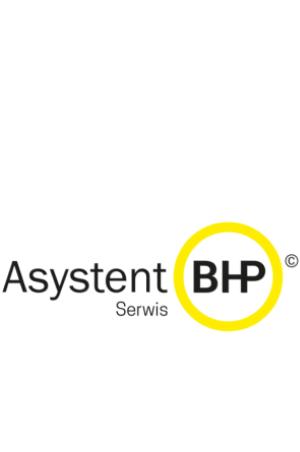 Przepisy BHP online